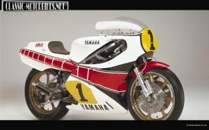 1981 YZR500 0W54
