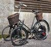 model c tws tricycle