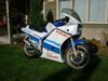 suzuki rg400 gamma 1986
