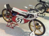 1977 Ringhini 50