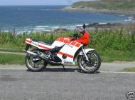 RD350 F2