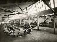 Vespa Pontedera Factory - 1950
