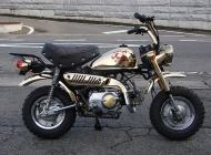 1984 Honda Monkey Bike
