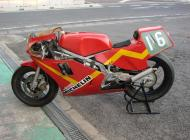 1984 RS250R