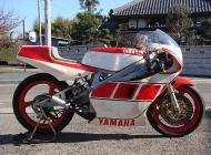 1986 Yamaha TZ250S