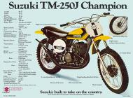 1972 Suzuki TM250J Sales Brochure