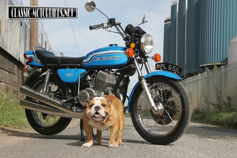Junkyard For Motorcycle Kawasaki