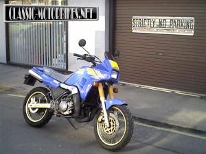 Yamaha TDR250 Restoration