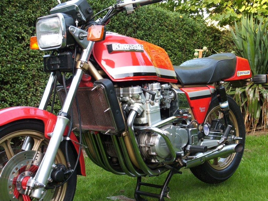 Kawasaki Z Mpg