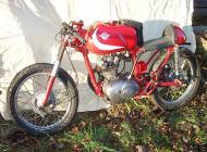 Ducati 125 Race Bike