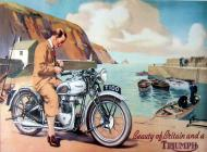 Triumph T100 Advert