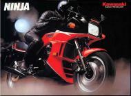 Kawasaki Ninja Sales Ad