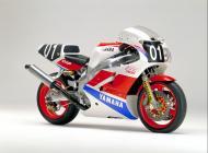1989 Yamaha FZR750R