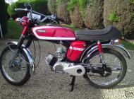 1975 Fizzy