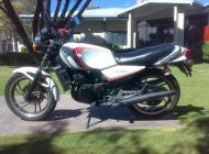 1982 RD250LC