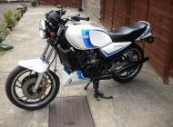 1981 RD350 LC