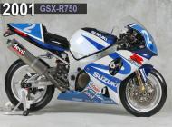 2001 Suzuki GSX-R750 Racing Bike