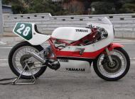 1985 Yamaha TZ250N