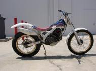 1987 Honda RTL250S