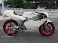 1989 Yamaha TZ250W