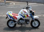 1992 Honda Baja Monkey Bike