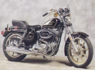 1978 Harley Davidson XLH 1000 Sportster 75 Anniversary