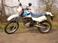 1985 Suzuki DR600
