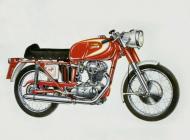 Ducati mach1