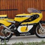 Yamaha TZ500 Gallery