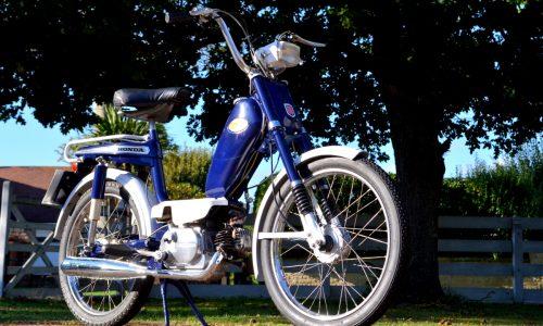 Honda PF50 Novio
