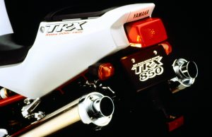 TRX850 Rear End Styling
